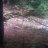 Cascadia Creekside West