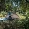 Walnut Grove Camp