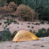 Artsy Cabin + Tent Site