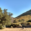 Cibbets Flat Campground