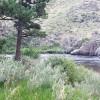 Stove Prairie Campground