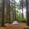 Abalone Campground