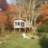 Rosasharn Farm