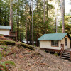 Glamping In The Redwoods