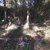 Horse Shoe Bend RV Camp