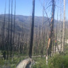 Horse Creek Hot Spring Campground