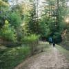 Enchanted Pond Campsite