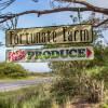 A Coastal Farm Experience