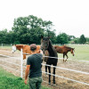 RV Site on Horse Farm
