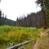May Creek Campground