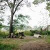 Tent - Organic Farm Near Ann Arbor