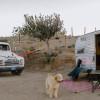 15 acre desert ranch,forest adjacen