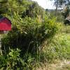 SRAG Private Wilderness Land