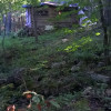 He Haw Hollow Tent Camping