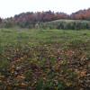 Pasture, Forest & Pond