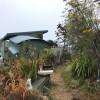 Eucalyptus Tree Tent Camp
