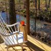 Cabin on the Creek Ozark Mtns
