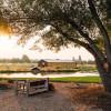 Rustic Oasis Camping