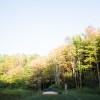 Northern Catskills Malaka Meadows