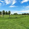 Camping at Horse Farm