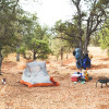 The Gypsy Ranch Tent Camping