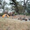 Cottonwood Creek-Old Oak Grove
