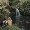Hamakua Cloudforest Waterfall
