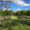 Horse Stables Ready for Season