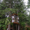 Tag Treehouse