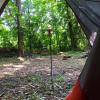Buckeye Campsite
