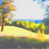 13  Shenandoah Valley View