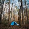 Raw Campground nearby Lake Wheeler