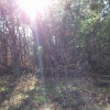 Hillbilly Primitive Camping