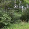 Breezewood Camp