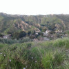 Fossil Hill