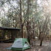 Suwannee River Camping