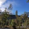 Halcyon Days Farm and Retreat