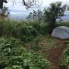 Views for Days - Haleakala Maui