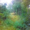 Rustic Rabbit Creek