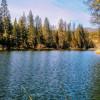 Willow Creek Bunk Cabin#1