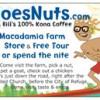 No frills cabins on Macadamia farm