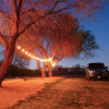 Pinnacle Farms tent campsite
