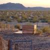 Desert Daisy - 1st Tent Platform