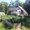 Off-grid Wilderness Homestead