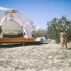 Terrapin Tent