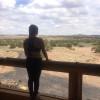 High Desert Paradise In Arizona