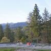 Old Yosemite Hitching Post