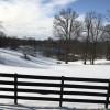 Cheval Blanc Farm