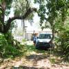 Oak Hammock / Flower Garden