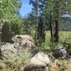 Hope Valley - High Sierra Haven